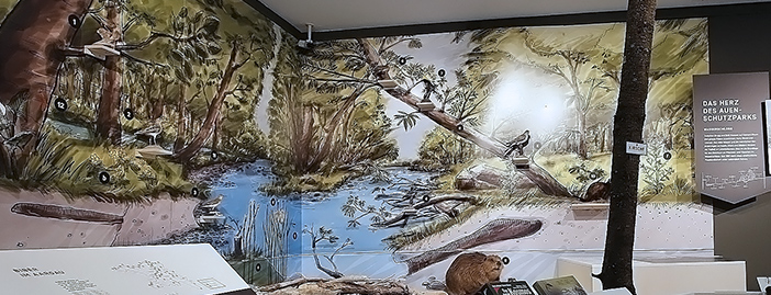 Illustration großes Landschaftswandbild für Sonderausstellung Auen