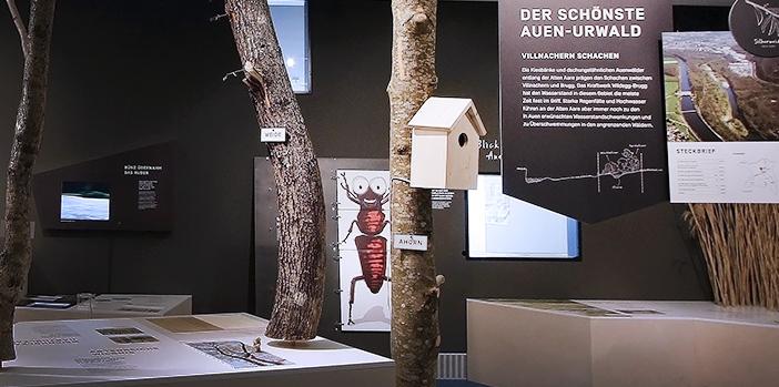 Verschiedene Tierillustrationen für Klipp-Klapp Spiel in Museumsausstellung